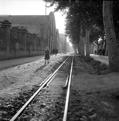 linia-tranvia-vapor