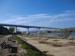 puente-tren-300x225[1]